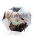 Sample Foldable Umbrella 4